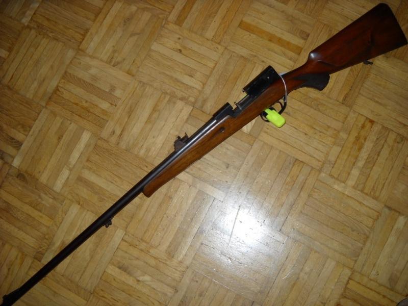 gevär 22 hornet