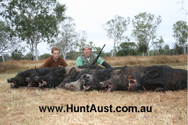 Best State to hunt Hog. - Hunting Forum